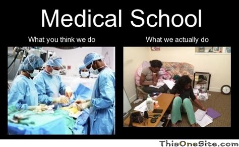 Med School Memes - medical school this one site