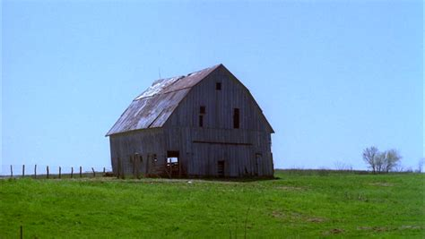 Define Barn Barn Grass Definition Meaning