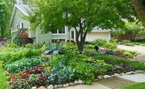 Town bans front yard vegetable gardens, Couple sues   dBTechno