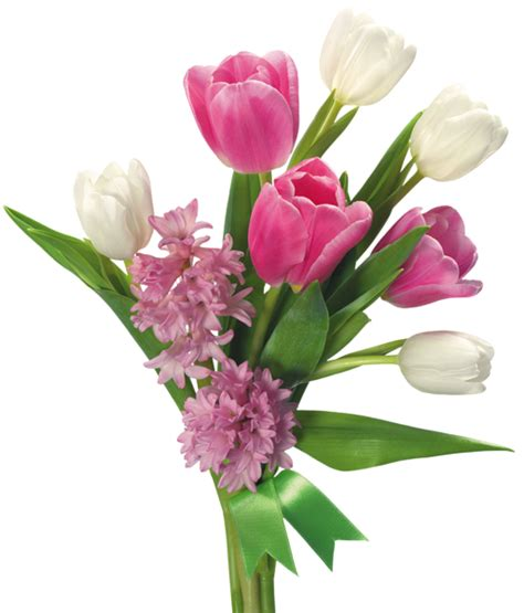 Aksesona Anting Flower Tulip Gold White Transparent bouquet of tulips and hyacinths png transparent picture gallery yopriceville high