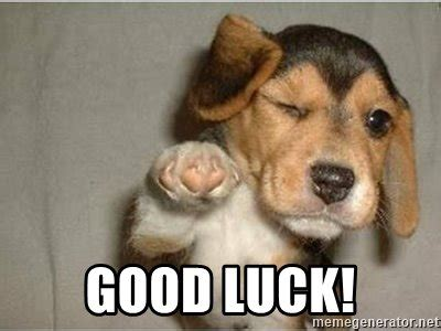 Funny Good Luck Memes - good luck funny winking dog meme generator