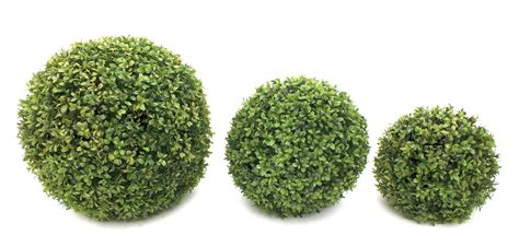 Beautiful Floor Plan by Artificial Buxus Ball From Evergreen Direct