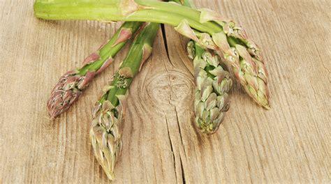 come cucinare gli asparagi coltivati asparagi come utilizzare al meglio gli asparagi coltivati