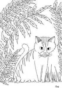 simple nature coloring pages cat by miwah animals coloring pages for
