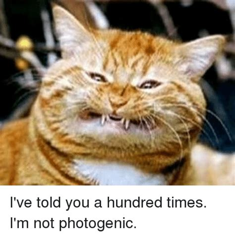 Photogenic Meme - i ve told you a hundred times i m not photogenic meme on