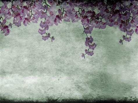 eden pattern wallpaper with floral pattern eden by wall dec 242 design giovanni pagani