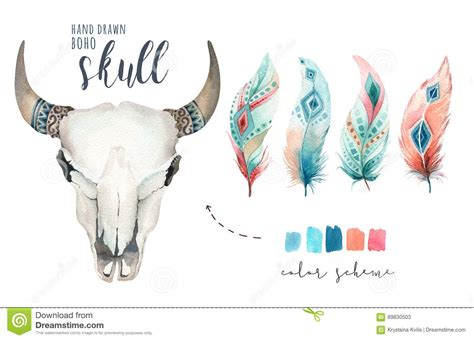 watercolor bohemian cow skull and feather western mammals