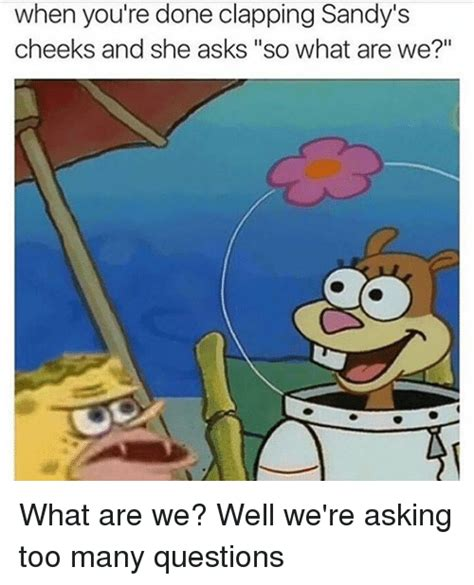 What Are We Meme - when you re done clapping sandy s cheeks and she asks so