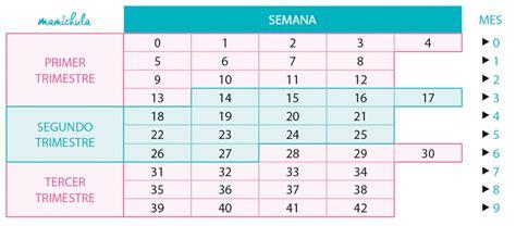 Calendario De Gestacion Calendario Semanas De Embarazo Mamichula