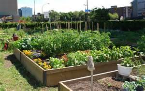 d 233 co jardin potager bio 16 denis jardin bio
