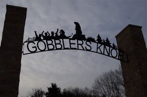 groundhog day nobody cares gobbler s knob the bygays go to groundhog day