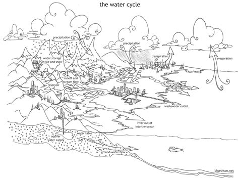 Coloring Pages The Water Cycle Bluebison Net Water Cycle Coloring Page