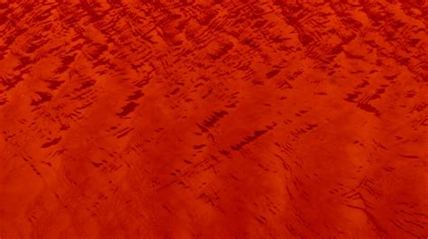 cool calm red water background  stock photo public