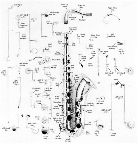 Alto Saxophone Parts Diagram