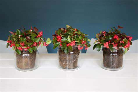 Blumen Im Einmachglas by Tischdeko Upcycling Blumen Im Weckglas Soulsister