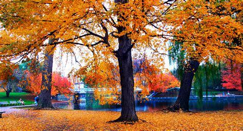 year  bostons  warmest october