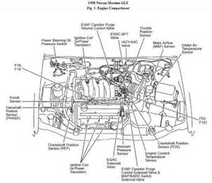 maxima engine diagram maxima free engine image for user manual