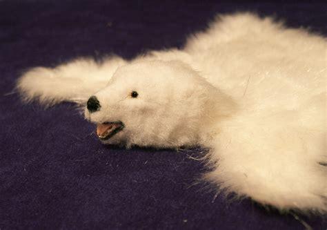 polar skin rug polar skin rug roselawnlutheran
