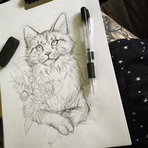 tattoo cat drawing 77 best images about illustration tattoo on pinterest