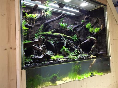 Aquascape Di Lu Paludario 3 Terraria