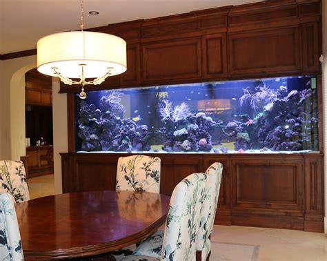 luxury custom aquariums fish tank maintenance