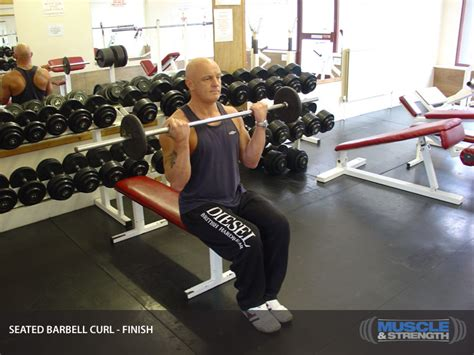 seated barbell curl seated barbell curl exercise guide tips