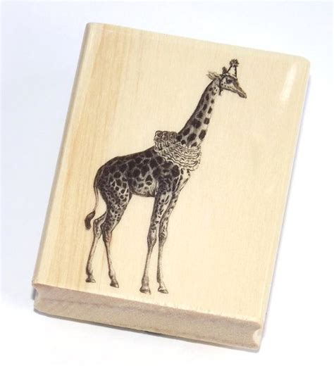 giraffe rubber st 1000 ideas about 1st birthday cards on