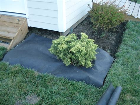 use landscape fabric to keep weeds out unless you