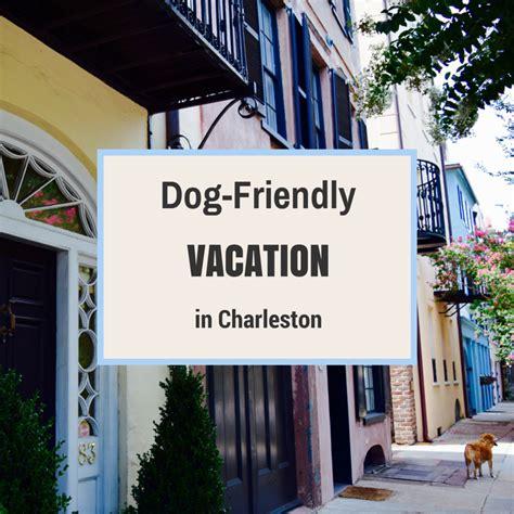 charleston dog house dog friendly vacation in charleston