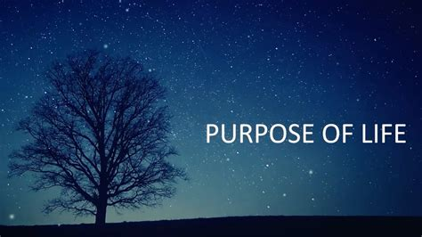 purpose of rvage purpose of official videoclip