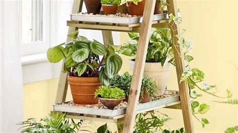 tools   indoor gardening ridiculously easy