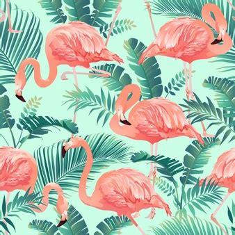 flamingo vans wallpaper pink flamingo vectors photos and psd files free download