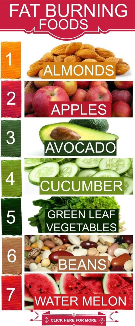 top 10 foods top 10 foods that burn belly