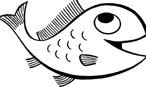 fish template printable image search results picture to