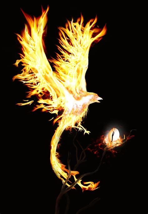phoenix tattoo with flames want realistic looking flames tattoos pinterest