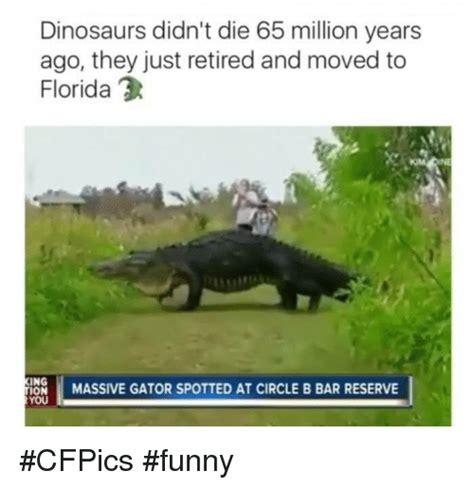 dinosaur memes dinosaur memes www pixshark images galleries