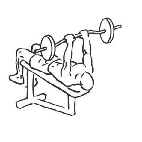 decline bench close grip triceps press decline close grip bench to skull crusher gymwolf