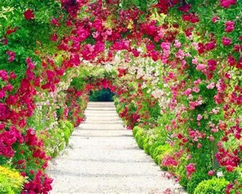 imagenes bonitas de paisajes para descargar fotos e imagenes bonitas de paisajes de flores para