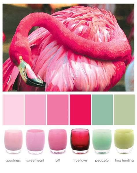 what color is a flamingo 25 best ideas about flamingo color on