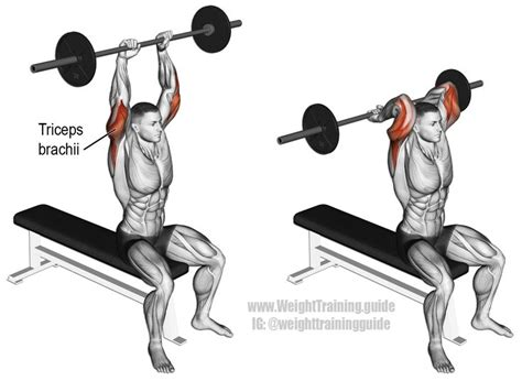 barbell swing overhead barbell triceps extension an isolation exercise