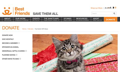 Www Heifer Org Catalog Gift Cards - 20 holiday gift programs that benefit nonprofits