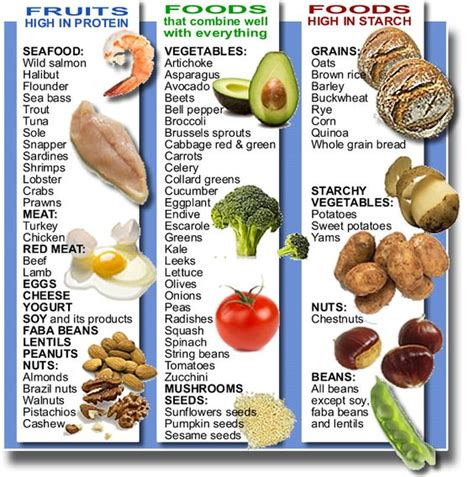 protein names your types of food health and excercise