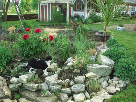 Rockery Designs For Small Gardens Small Rock Garden Ideas Small Garden Ideas