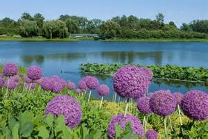 Most Beautiful Flower Garden Image Gallery Most Beautiful Flower Gardens