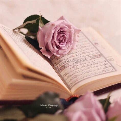 quran wallpaper pink pink quran rose image 4065701 by winterkiss on favim com