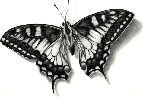 Imagenes De Mariposas Realistas | mariposa by efra270 on deviantart