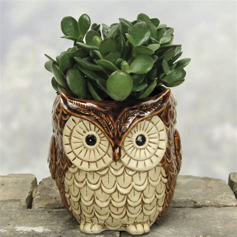 owl item 26 super cute garden planters you can send as gifts do