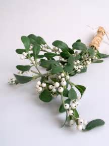 way past normal the myth and lore of mistletoe