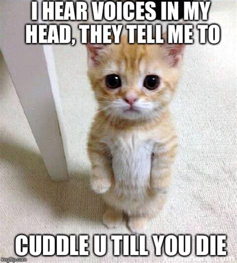 Cuddle Meme - 20 cutest cuddle memes sayingimages com