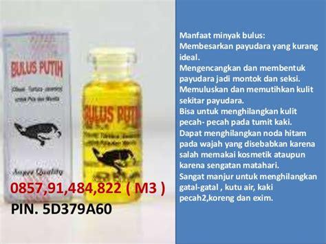 penggunaan minyak bulus  payudara pemakaian minyak